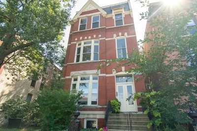Cook County Condo/Townhouse New: 2017 West Evergreen Avenue #201