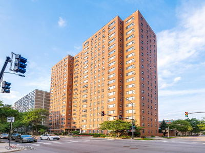 Cook County Condo/Townhouse New: 2909 North Sheridan Road #1110