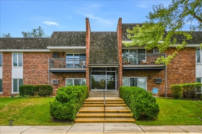 Downers Grove Condo/Townhouse New: 3939 Saratoga Avenue #E207
