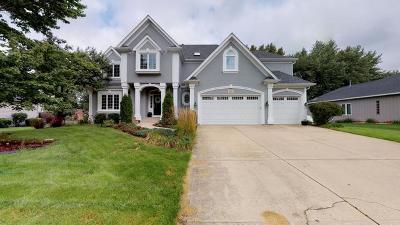 Naperville Single Family Home New: 2239 Joyce Lane