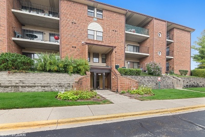 Buffalo Grove Condo/Townhouse New: 740 Weidner Road #104