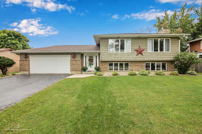 Antioch Single Family Home New: 572 Longview Drive