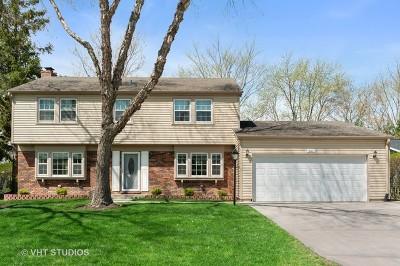 Buffalo Grove Single Family Home New: 631 Indian Spring Lane