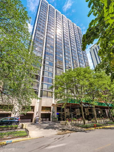 Condo/Townhouse New: 50 East Bellevue Place #1903