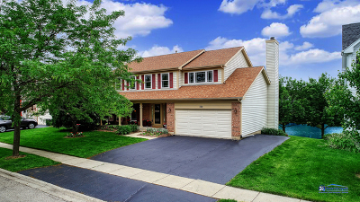 Grayslake Single Family Home New: 122 Braxton Way