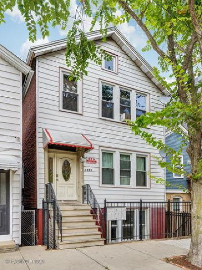 Chicago Multi Family Home New: 1458 West Chestnut Street