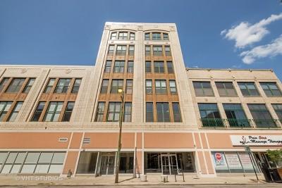 Chicago Condo/Townhouse New: 3151 North Lincoln Avenue #211