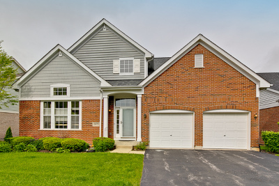 Vernon Hills Single Family Home New: 1875 Olympic Drive