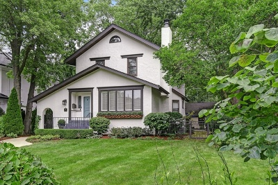Du Page County Single Family Home New: 19 North Vine Street
