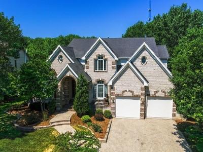 Chicago, Aurora, Elgin, Hammond, Joliet, Kenosha, Michigan City, Naperville Single Family Home New: 5s524 Eugenia Drive