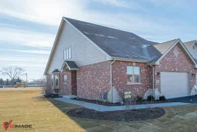 Lockport Condo/Townhouse New: 15006 South Preserve Drive