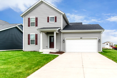 Romeoville Single Family Home New: 460 South Stone Bluff Drive