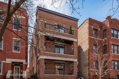 Chicago Condo/Townhouse New: 1125 West Altgeld Street #2