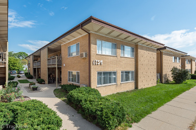 Cook County Condo/Townhouse New: 1754 East Oakton Street #201