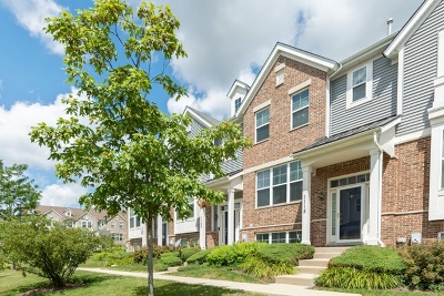 Cook County Condo/Townhouse New: 1118 Tuscany Drive
