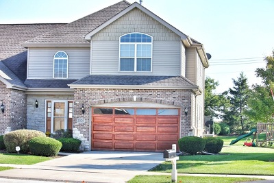 Plainfield Condo/Townhouse New: 25525 West Cove Way