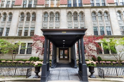 Cook County Condo/Townhouse New: 1320 North State Parkway #8-D