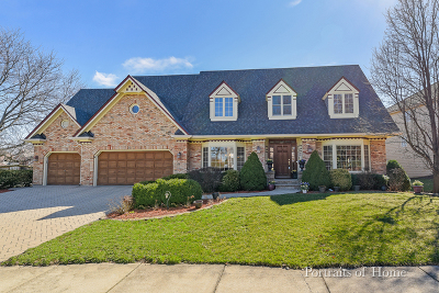 Naperville Single Family Home New: 2053 Mustang Drive