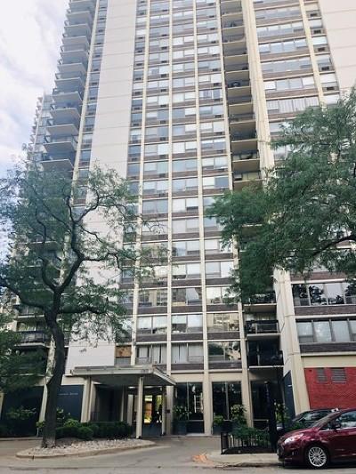 Condo/Townhouse New: 1360 North Sandburg Terrace #2509C