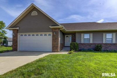 New Berlin Single Family Home For Sale: 214 Patton