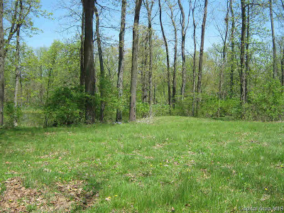 New Berlin Residential Lots & Land For Sale: 1205 Annandale Rd