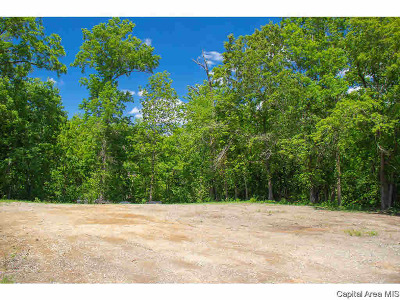 Carlinville Residential Lots & Land For Sale: E Hoehn
