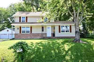 Pleasant Plains Single Family Home For Sale: 1626 Farmingdale