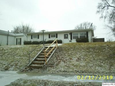 Quincy IL Single Family Home For Sale: $23,100