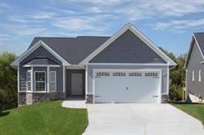 Davenport Condo/Townhouse For Sale: 1602 Irish Woods
