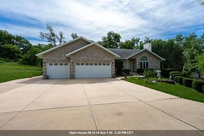Davenport Single Family Home For Sale: 523 Wisconsin