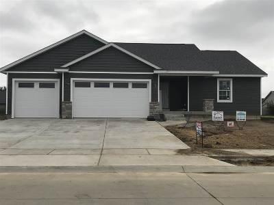 Single Family Home For Sale: 343 Hillside Drive