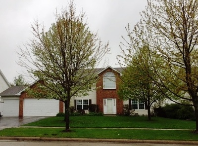 Boone County Single Family Home For Sale: 187 Red Oak Street