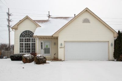 Belvidere Single Family Home For Sale: 1007 Indian Dancer Trail