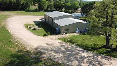 Ogle County Single Family Home For Sale: 5067 W Pines Road