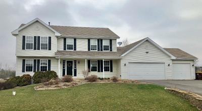 Rockford Single Family Home For Sale: 7949 McNair Road