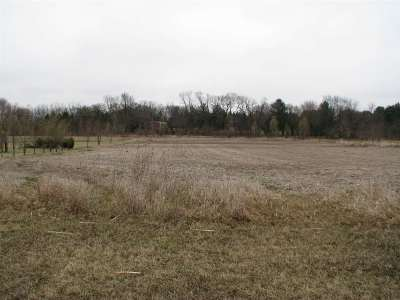 Residential Lots & Land For Sale: 9855 Little Lucy Lane