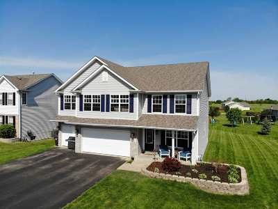 Ogle County Single Family Home For Sale: 888 Prairie Lily Lane