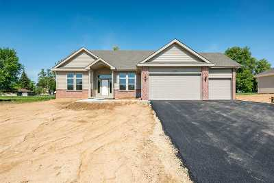 Belvidere Single Family Home For Sale: 10052 Rylee Court