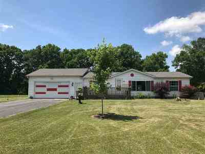 Ogle County Single Family Home For Sale: 7300 S Rock Nation Road