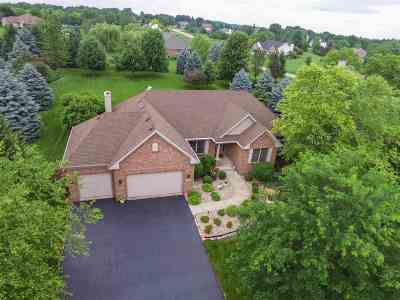 Belvidere Single Family Home For Sale: 11704 Galloway Lane
