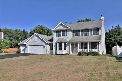Rockford Single Family Home For Sale: 3841 Golden Prairie Avenue