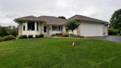 Ogle County Single Family Home For Sale: 3181 N Silver Ridge Drive