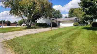 Ogle County Single Family Home For Sale: 602 E Webster Street