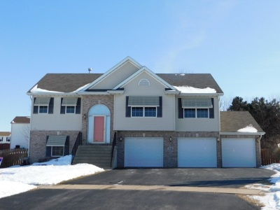 Belvidere Single Family Home For Sale: 1246 Baltic Mill Drive
