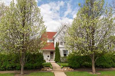 Ogle County Single Family Home For Sale: 201 N Congress Avenue