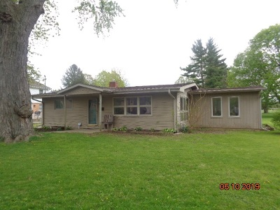 Ogle County Single Family Home For Sale: 416 Avenue D