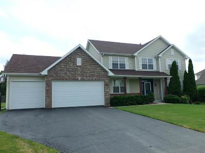 Belvidere Single Family Home For Sale: 8949 Nicole Place