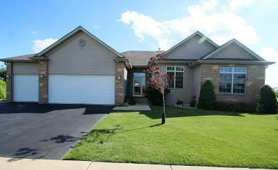 Belvidere Single Family Home For Sale: 4522 Spotted Deer Trail