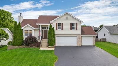 Ogle County Single Family Home For Sale: 206 Parkview Drive