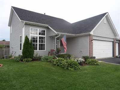 Ogle County Single Family Home For Sale: 148 Prairie Moon Drive